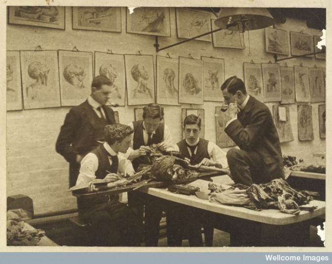L0039195 The interior of a dissecting room: